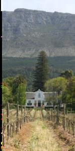 Historical homestead on a winefarm in constantia