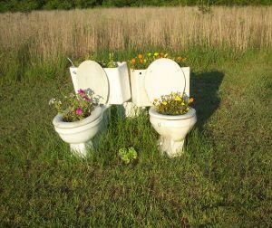 toilet cape town